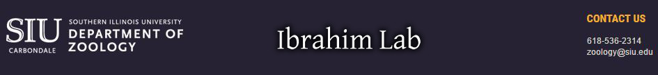 Ibrahim Lab Research
